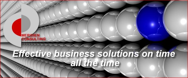 MERIDIEN CONSULTING : Effective solutions on time all the time